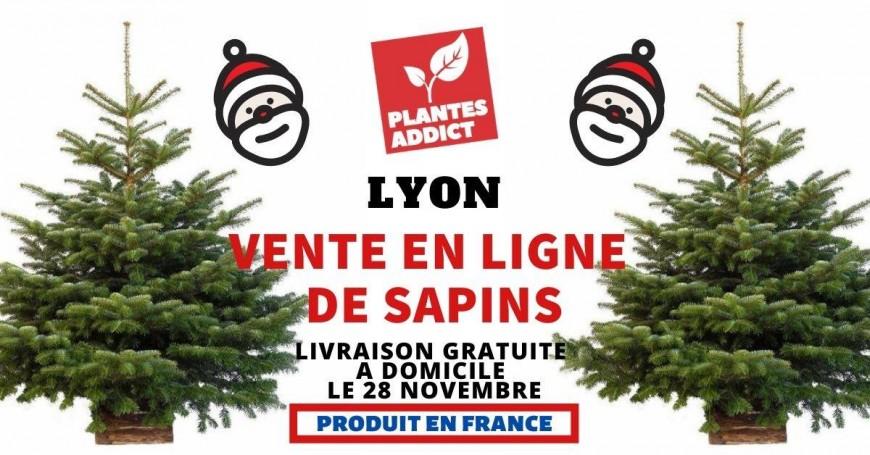 Un sapin dans ton salon (Livraison gratuite Lyon)
