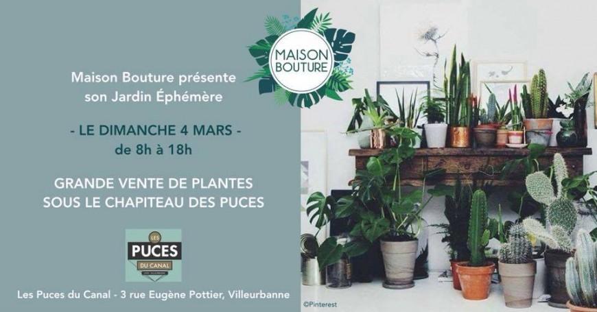 Jardin éphémère : un marché aux puces... à plantes !