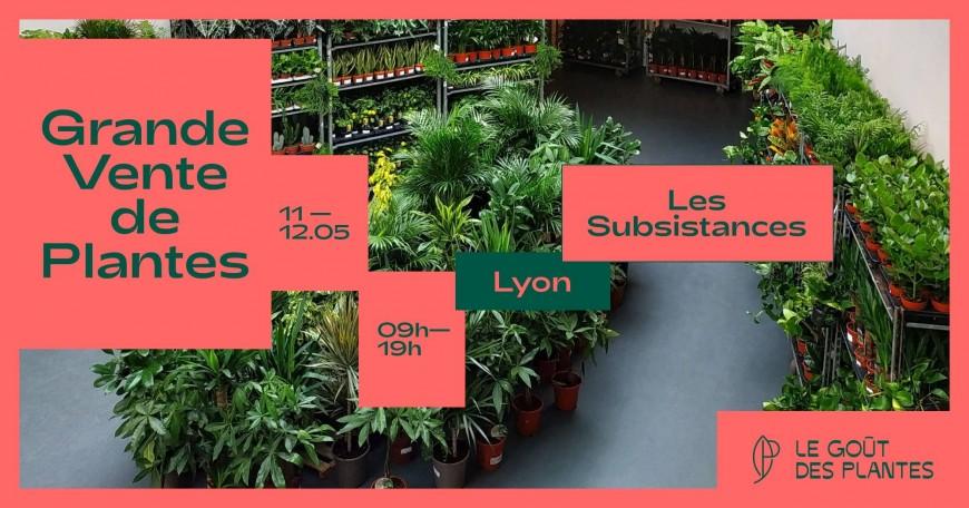 Le Goût des Plantesdébarque àLyon pour une grande vente de plantes !