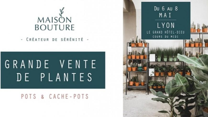 "Shopping : Grande vente de plantes ""Maison Bouture"" au Grand-Hôtel Dieu"