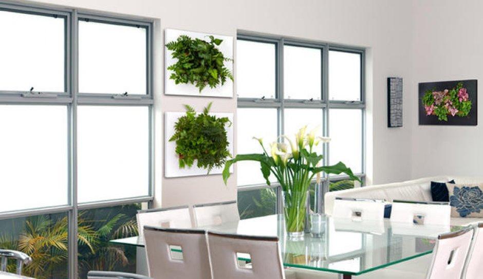 le cadre v g tal tendance d co verte lyon femmes. Black Bedroom Furniture Sets. Home Design Ideas