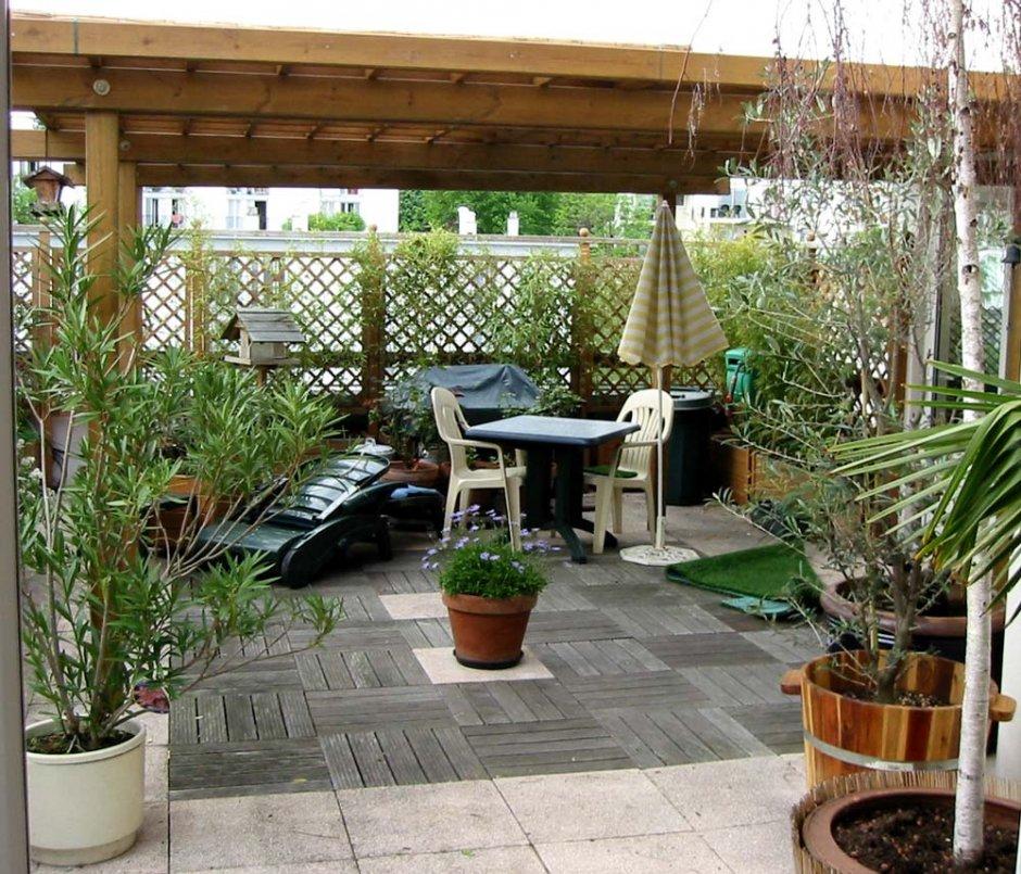 Quelles plantes pour votre terrasse lyon femmes for Deco exterieur terrasse