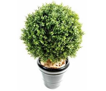 Deco o acheter des plantes artificielles lyon for Ou acheter des plantes