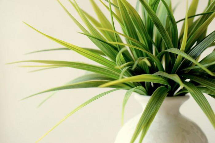 plantes artificielles a lyon