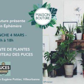 Jardin éphémère : un marché aux puces… à plantes !