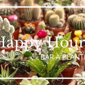 Little Liamone, le Bar à Plantes du 1e arrondissement, organise un Happy Hours !
