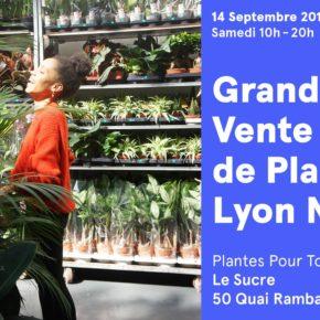 Grande vente de plantes vertes n°12 de Plantes Pour Tous